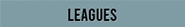 Robbie Wagner's leagues